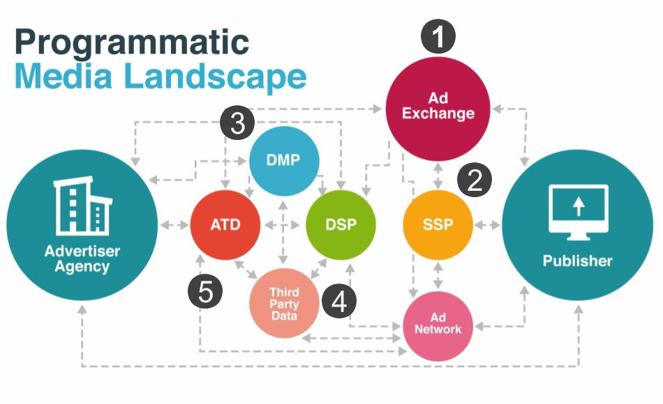 Picture of Programmatic